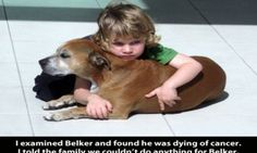 A Dog's Purpose, According To A 6-Year-Old (Photo)
