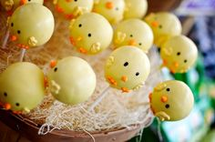 real-baby-shower-farm