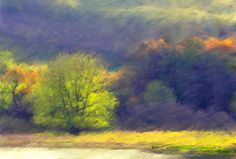 Carl Hoffner Early Fall, Contemporary Landscape Painting. $140.00, via Etsy.