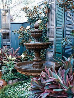 courtyards gardens, fountains in gardens, old shutters, dream backyard, courtyard gardens, outdoor fountains, garden fountains, container gardening, dream gardens