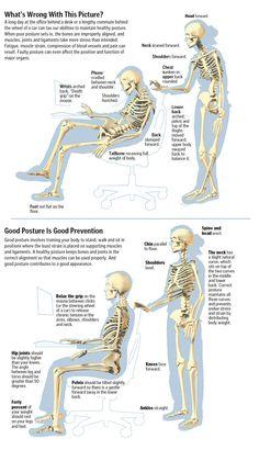 ❧ Bad & Good posture