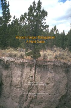Western juniper management : a field guide by Oregon Watershed Enhancement Board