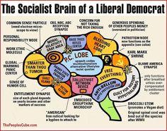 work ethic, socialist brain, jokes, funni, conserv, liber democrat, polit, quot, liber brain