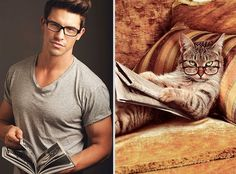 Girls' Favorite Things Brought Together: 25 Diptychs of Hot Guys and Kittens | Bored Panda