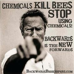 Chemicals kill bees