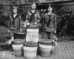 Girl Scouts in 1916 collect peach pits during World War I, which were ground up and used to filter soldiers' gas masks.