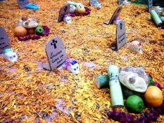 Altar de muertos del Departamento de Lingüística, UAM-I