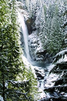 14 Great Day Hikes for Beginners - Washington State Parks.