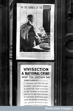Victorian anti-vivisection propaganda