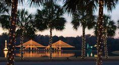 Holiday greetings from Charleston, SC!