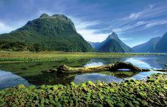 Amazing New Zealand...<3 855.680.LOVE