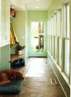 Love this mud room!  Beautiful stone tile floors, lots of windows, bench, moss green walls...doggie nap :)