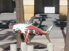 Chinese dragon shark