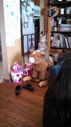 She saw the kids playing on it and now she meows until you rock her. - Imgur