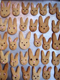 Bunny Cookies caramel bunni, food, peter rabbit, caramels, easter party, dog biscuits, easter bunny, easter cookies, bunni cooki