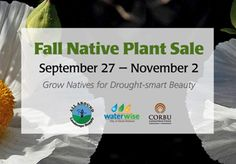 SBBG Annual Fall Native Plant Sale: September 27 - November 2, 2014