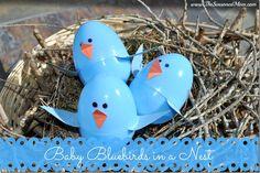 Spring Craft for Kids: Baby Bluebird at www.TheSeasonedMom.com