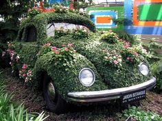 I love the old VW Beetles and this one is way to cute! Combines to of my favorites, the Classic bug & gardening - Merv Edinger