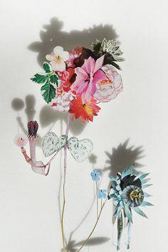 'Pressed flower' collages by Anne Ten Donkelaar