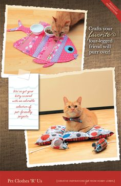 DIY crafts your favorite cat will purr over!