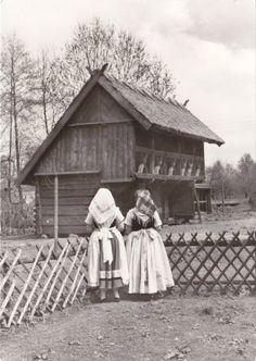 Vintage Costume Postcard  Spreewald  #Spreewald