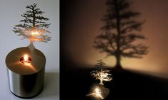 i want trees everywhere!  i want to live INSIDE a tree!
