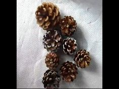 Decorating Pine Cones For Christmas