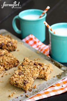 Chocolate Chip Granola Bars - www.afarmgirlsdabbles.com