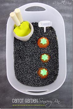 Carrot Garden Sensory Bin #sensory #carrot # spring http://www.mamamiss.com ©2013