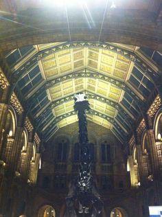 Robert Burns on Twitter: A dinomite night at @NHM_London #scienceuncovered #SU2014