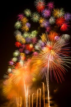 ~~Tsuruoka hanabi festival ~ Akagawa hanabi in Tsuruoka, one of the biggest fireworks festival in Japan by Eric~~