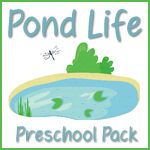 Pond Life unit    Could also be used with Animal Habitats unit    Put it with Life Cycles because of frogs preschool printables, prek, frog, preschool themes, pond life, preschool pack, pond unit