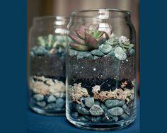 mason jar ideas - diy mason jar terrarium via Brittany and Dylan