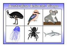 Australian animals bingo