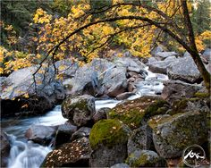 Random Photo of the Week #1  — Merced River, 2009