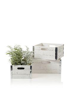 Wald Imports Set of 3 Square Wood Crates with Metal Trim, Distressed White, http://www.myhabit.com/redirect?url=http%3A%2F%2Fwww.myhabit.com%2F%3F%23page%3Dd%26dept%3Dhome%26sale%3DA1RCBEG66RJKCS%26asin%3DB00812GGTS%26cAsin%3DB00812GGTS