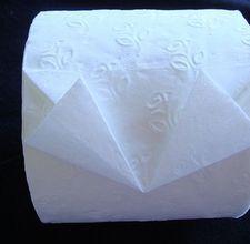 Toilet paper origami kites