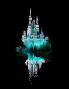 Disney world!!! Orlando, Florida.I would love to go see this place one day.Please check out my website thanks. www.photopix.co.nz