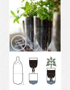 DIY upcycled plastic bottle herb planter
