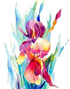 Jo Lynch - Iris Designz