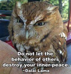 <3 Inner Peace <3