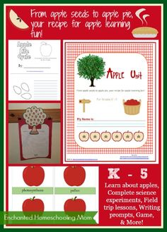 Apple Unit - Enchanted Homeschooling Mom