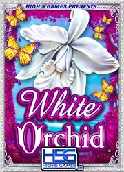 White Orchid - Slot Game by H5G. I