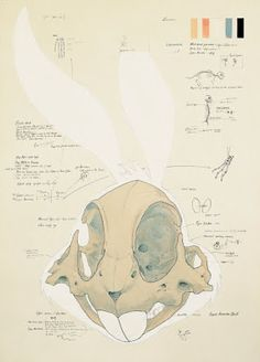 """Animatus"" by Hyungkoo Lee (Cartoon skeletons)"
