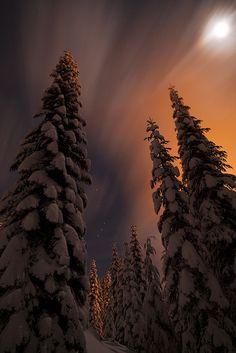 ✯ Snoqualmie Pass, Washington