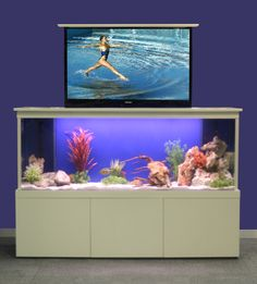 The TV Tank from Picturehouse hides your screen within a fish tank