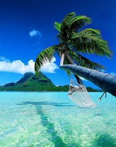 Bora Bora. honeymoon, puerto rico, french polynesia, dream vacations, beach, hammock, place, bucket lists, bora bora