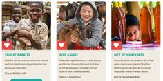 Give the gift of an animal through Heifer International.
