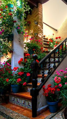 patio flowers idea, color stair, spain garden, stair spindl, grand garden, patio flower ideas, patios cordoba, courtyard, screened porches