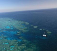 """Superb dive site """"The Stepping Stones"""" at Bait Reef, on the Great Barrier Reef - with Wings Diving Adventures"""